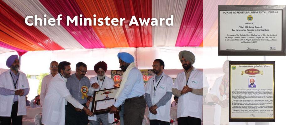 banner-award-new